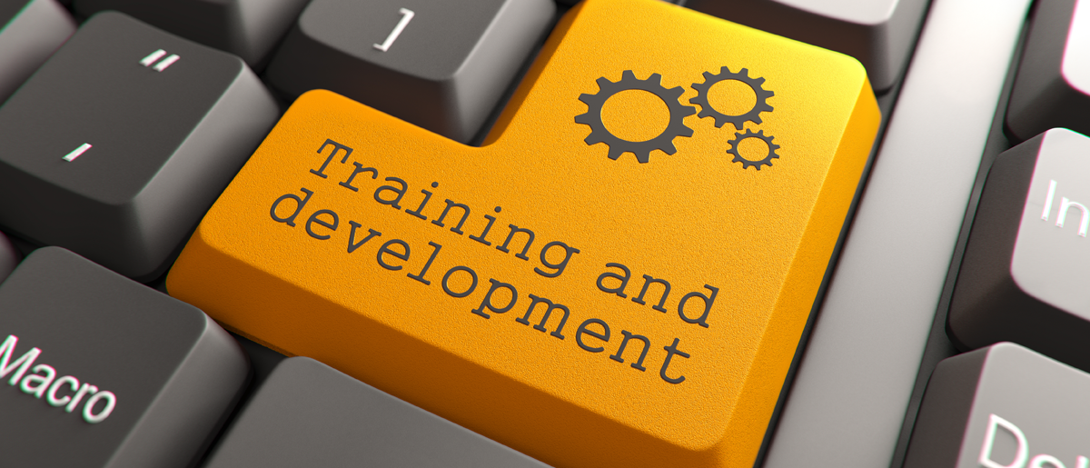 Logo - Training and Development - Junior-Broker